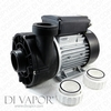 LX WTC150-AB Pump 1.5 HP | Hot Tub | Spa | Whirlpool Bath | Water Circulation Pump | 220V/50Hz | 5.8